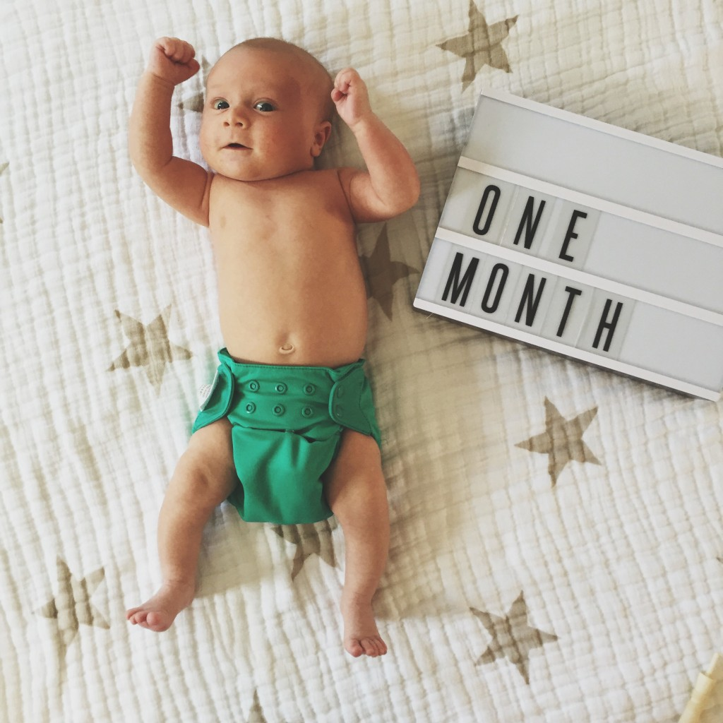 Malachi · one month 2 | ROSE